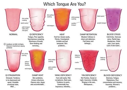 tongue_chart.jpg
